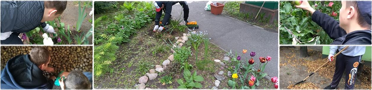 Szkoła przysposabiajaąca do pracy zajęcia ogrodnicze
